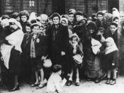 Auschwitz concentration camp, arrival of Hungarian Jews, Summer 1944