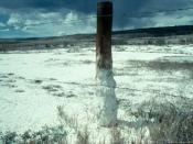 Salt-affected soils are visible on rangeland in Colorado. Salts dissolved from the soil accumulate at the soil surface and are deposited on the ground and at the base of the fence post.