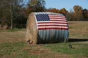 English: A round bale of hay with a flag of the United State of America on display for the 2008 presidential election on New Hope Church Road (Highway 1723) near . Note the solar panel and spot light set up to illuminate the display at night.