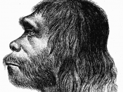 English: First reconstruction of Neanderthal man Español: Primera reconstrucción del Hombre de Neandertal