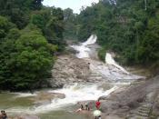 Bahasa Melayu: Terletak dalam kawasan Hutan Simpan Kekal (HSK) Bukit Tinggi.