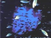 Air Liquide (album)