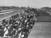 Jews from Carpathian Ruthenia arriving at Auschwitz-Birkenau