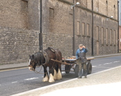 English: Rag and bone man in Dublin, Ireland