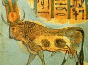 English: The sacred Apis bull shown on a Twenty-first dynasty Egyptian coffin.