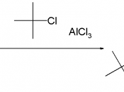 Example of steric protection in Friedel-Crafts alkylation