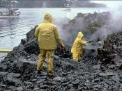 Workers using high-pressure, hot-water washing to clean an oiled shoreline