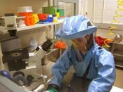 English: Biosafety level 4 hazmat suit: researcher is working with the Ebola virus