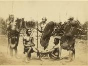 English: Zande men with shields, harp
