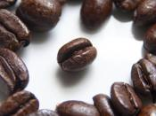 English: Roasted coffee beans photographed using a macro technique.