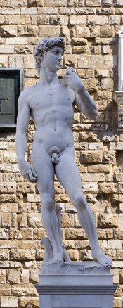 English: A vertical panorama of a copy of the statue of David by Michelangelo on the Piazza della Signoria in Florence, Italy. Nederlands: Een verticaal panorama van het standbeeld van David door Michelangelo op het Piazza della Signoria in Florence, Ital