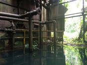 Abandoned Sugar Industry Warehouse