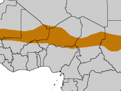 The Sahel forms a belt up to 1,000 km wide, spanning Africa from the Atlantic Ocean to the Red Sea.