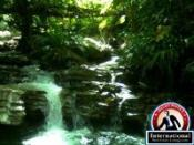 Panama, Panama, Panama Farm/Ranch  For Sale - 174 HECTARE FARM LAND IN PANAMA