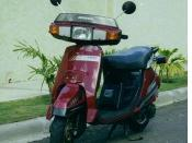 English: 1988 Honda Lead 125 NH125 Burgundy