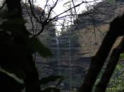 Jamison Valley, Blue Mountains, New South Wales (483591)
