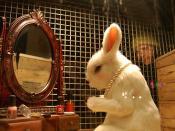 Color Cosmetics Rabbit