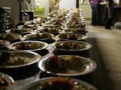Mass food production02