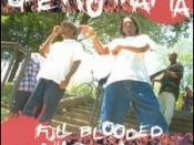 Full Blooded Niggaz
