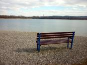 English: Bench, Pine Lake resort No-one enjoying the view over the water towards Ingleborough today.