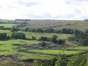 English: Vindolanda