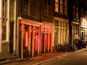 A view of two brothels in a small street in Amsterdam's Red-light district, also known as the