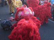 Lion dancers surrounded by onlookers at the Auckland lantern festival. A child peers inside one lion's costume.