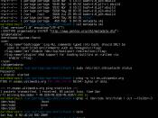 Screenshot of a sample Bash session, taken on an old release of Gentoo Linux.