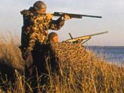 English: crop of File:Bgforhunting.jpg Taken by Dr. F Eugene Hester. Picture supplied by Fish and Wildlife Service Website. http://www.fws.gov/hunting/