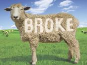 Broke: The New American Dream