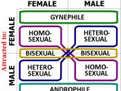 Gynephilia-androphilia-heterosexual-homosexual orientations diagram