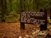 Thoreau's quote near his cabin site, Walden Pond.