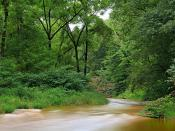 Conestoga River Park (1)