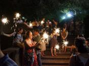 Malcolm X Park Fireworks 3355