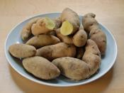 Bamberg potatoes