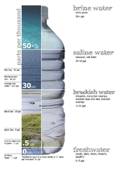 English: Graphic breakdown of water salinity, defining freshwater, brackish water, saltwater, and brine water.