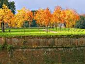 English: Autumn in Lucca