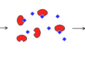 Saturation of enzyme active sites with substrate.