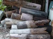 English: Wooden stumps extracted in 2007 from a 1930s Queenslander house in Brisbane, Australia. Extensive damage to the subterranean parts of the stumps was caused by termites.