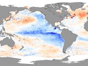 Sea surface skin temperature anomalies in November 2007 showing La Niña conditions