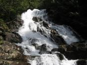 McIntosh Falls