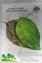 English: It is a poster by EEG, that shows effects of desertification.