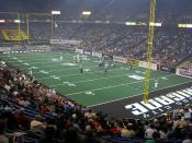 Arena football field