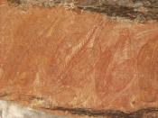 Indigenous Australian rock art depicting Barramundi fish
