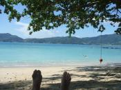 Thailand - Phuket - Patong - Paradise Beach - very nice