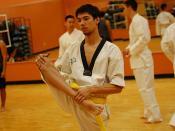 utsa karate club