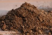English: Schultz brand Canadian Sphagnum peat moss, a common soil amendment.