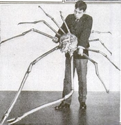 English: Japanese spider crab Русский: Японский краб-паук