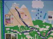 Water Cycle 3