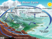 Water cycle http://ga.water.usgs.gov/edu/watercycleprint.html Other language versions: Català Czech español Finnish Greek Japanese Norwegian (bokmål) Portugese Romanian עברית Diné bizaad (Navajo) and no text and guess water vapor